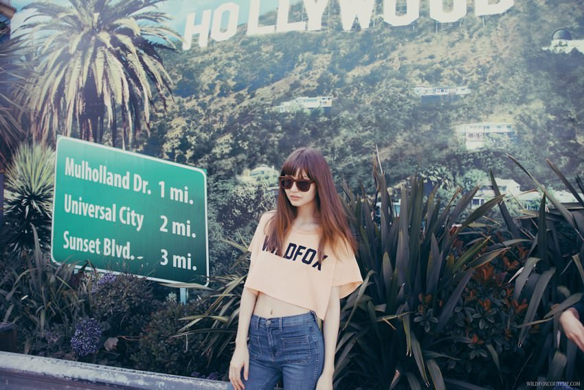 Wildfox-Sunglasses-Child-In-The-City.1