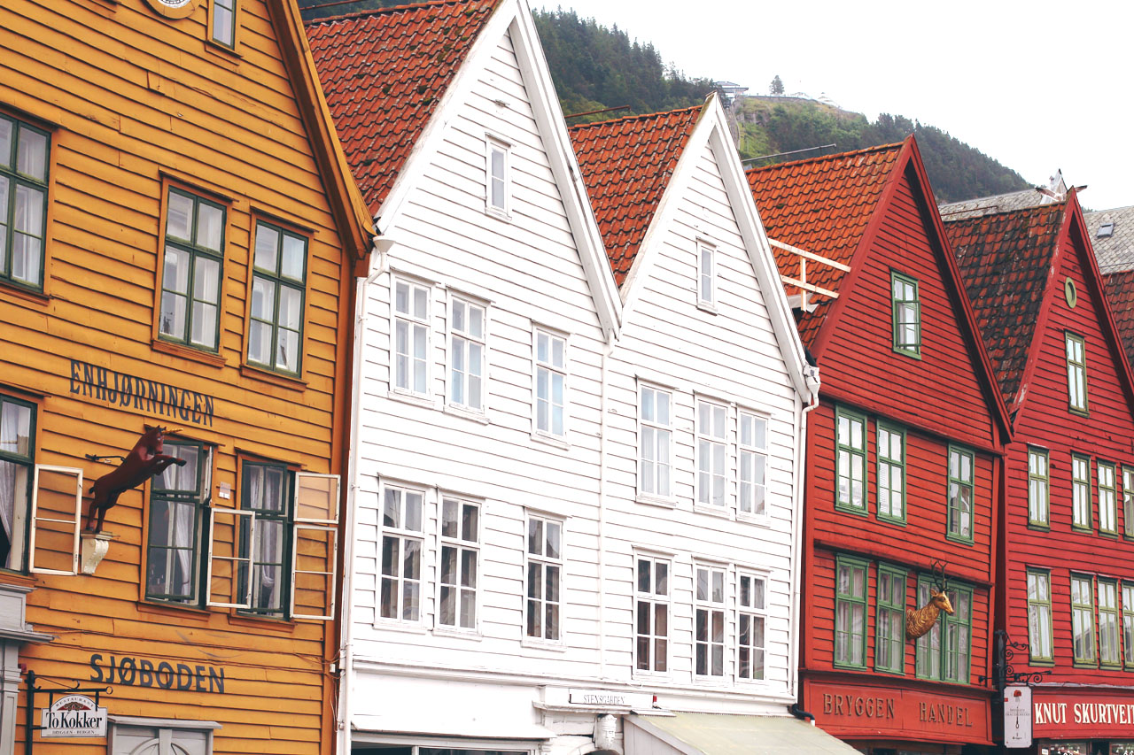 The Bergen Guide